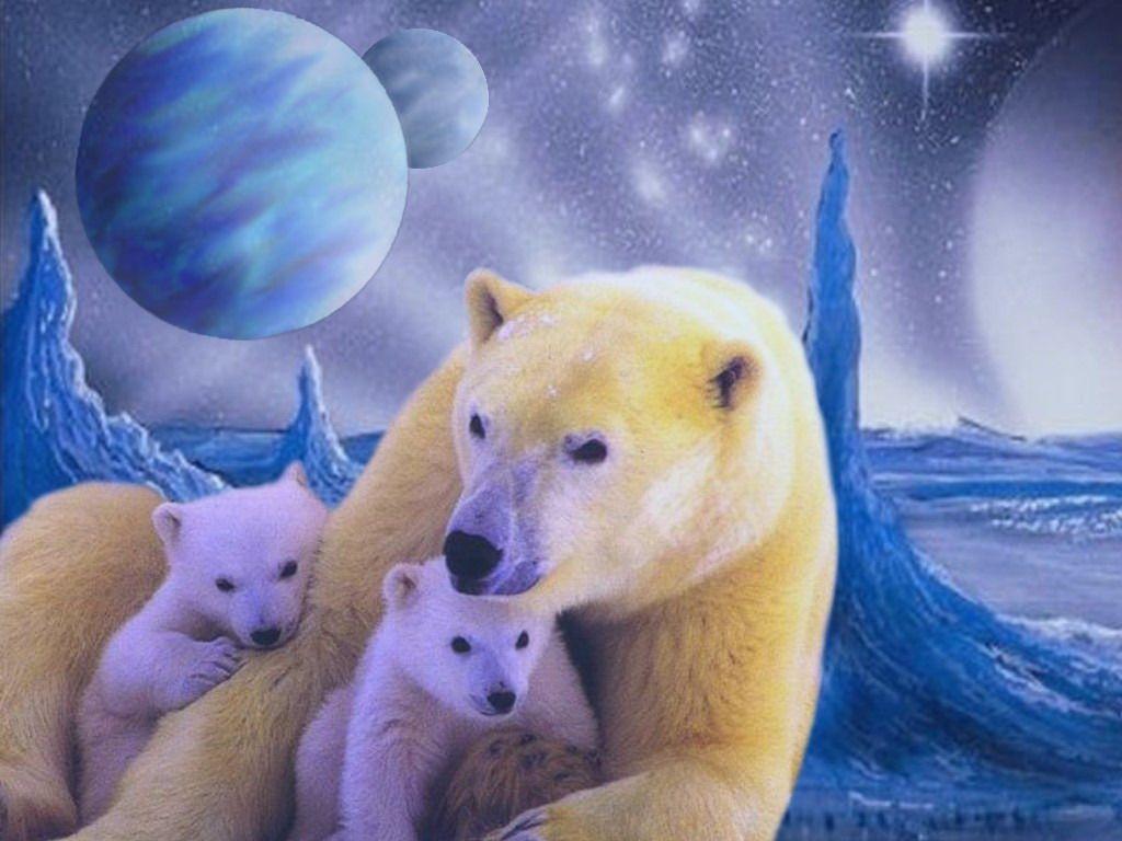 Le Royaume de l'ours polaire